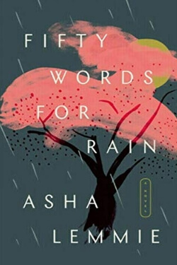 book cover Fifty Words for Rain by Asha Lemmie