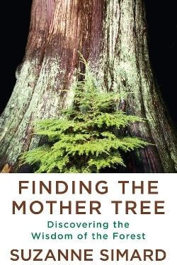 book cover Finding the Mother Tree by Suzanne Simard