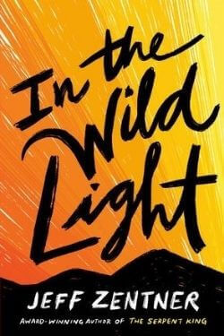 book cover In the Wild Light by Jeff Zentner