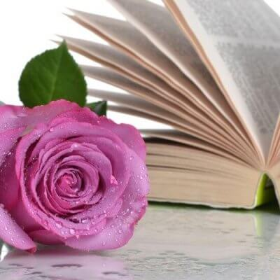 pink rose and open book