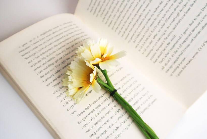 open book, yellow flower