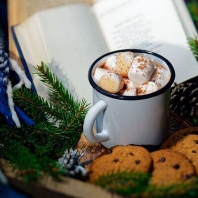 book, hot chocolate, cookies, pine garlands