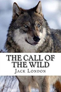 book cover The Call of the Wild by Jack London