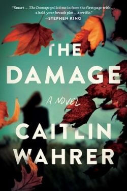 book cover The Damage by Caitlin Wahrer
