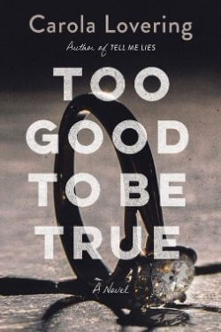 book cover Too Good to Be True by Carola Lovering